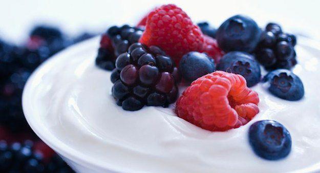 yogurt contains probiotics
